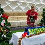 Christmas Tree Buzz Wire Hire