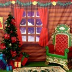 Santa's Christmas Grotto Meet and Greet Hire