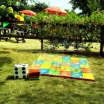 Giant Snakes and Ladders Hire