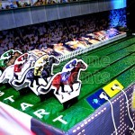 Gold Cup Horse Racing Hire