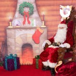Meet and Greet Grotto interior with Santa
