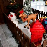 Close up of a Reindeer feeding outside Santa's Wooden Grotto