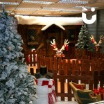 Santa's Wooden Grotto during an indoor Event