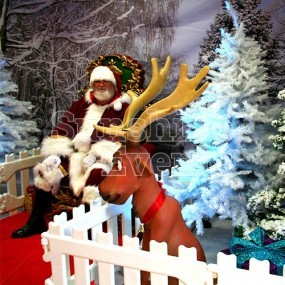 Santa's Christmas Wonderland Meet and Greet Hire