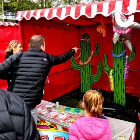 Cactus Ring Toss Stall Hire