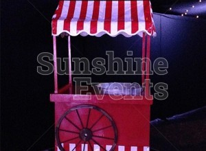 GALLERY - Candy Floss and Fun Foods