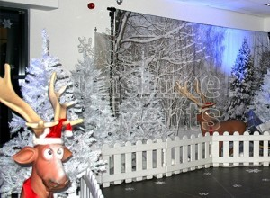 CASE STUDY - Christmas filming for The Gadget Show