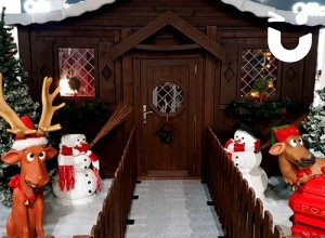 CASE STUDY - Supermarket's Magical Christmas Grotto