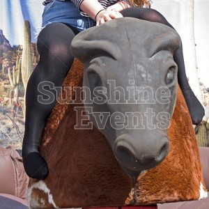 Rodeo Rides Bull with Soft Head