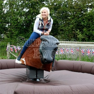 Rodeo Bull for outdoor event